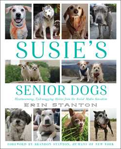 Susie's-Senior-Dogs